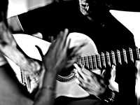 David Amaya flamenco